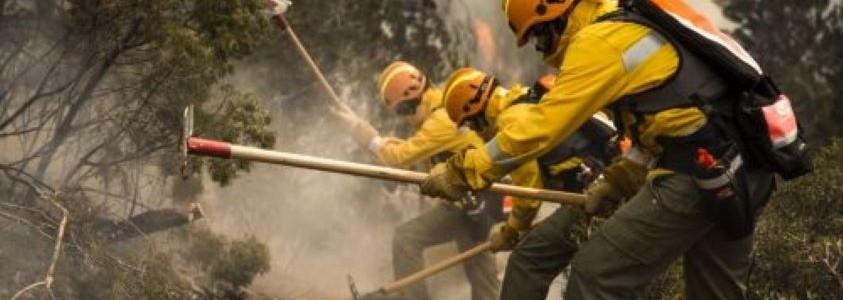 Lutte contre les incendies de forêt